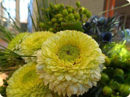 Blomster fra torvet