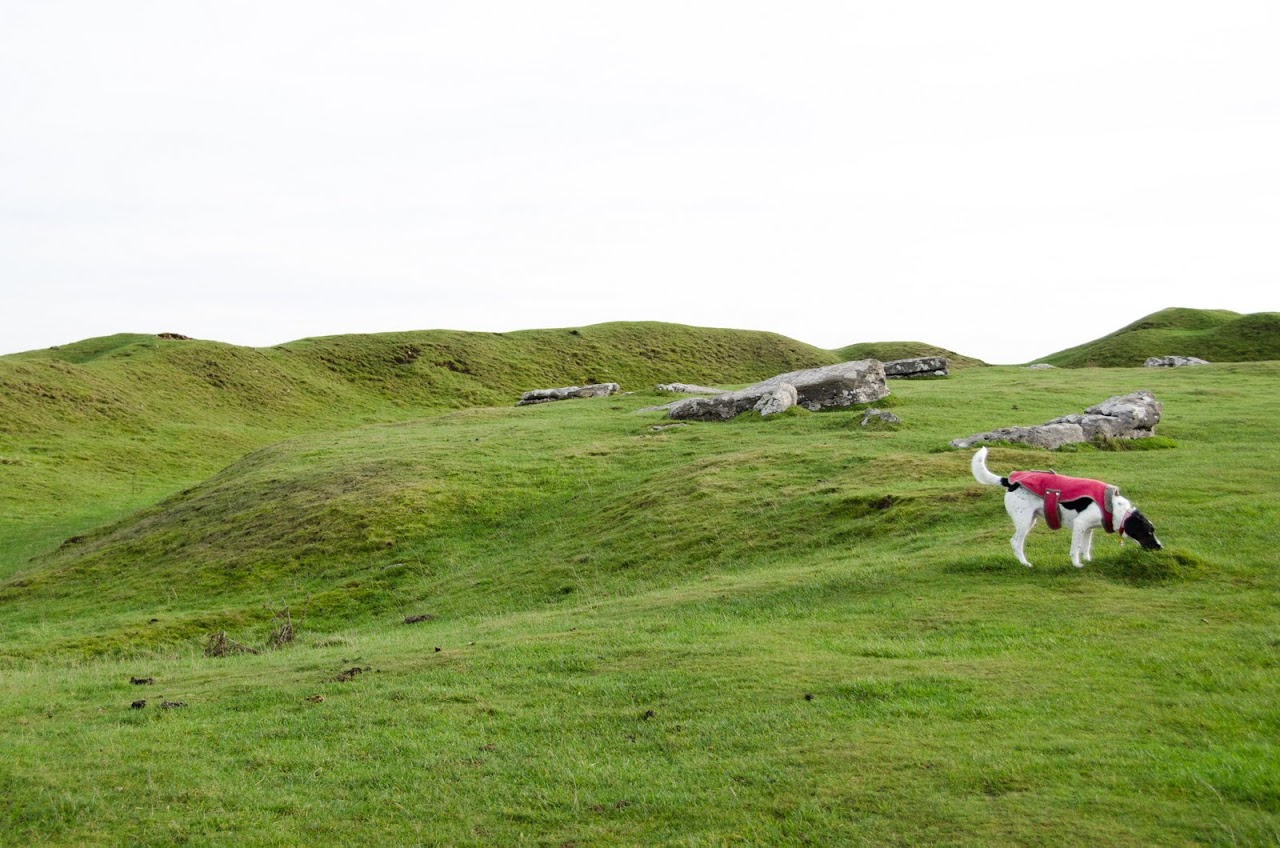Abby at Arbor Low