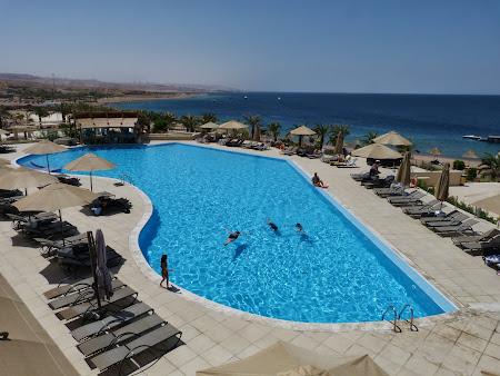 Plaja Marea Rosie: Piscina Aqaba