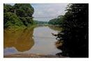 _P6A1650_Nilambur_keralapix.com