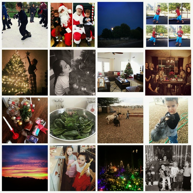 PicMonkey Collage12-24-14