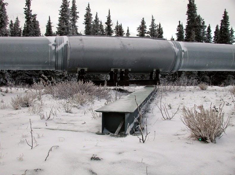 trans-alaska-pipeline-5
