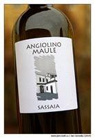 sassaia-2013-La-Biancara-Angiolino-Maule