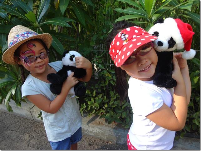 SD Zoo 087