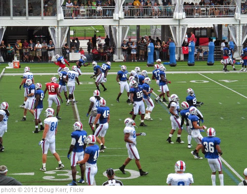 '2012 Buffalo Bills Training Camp' photo (c) 2012, Doug Kerr - license: https://creativecommons.org/licenses/by-sa/2.0/