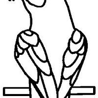 coloriage-perroquets-0.jpg