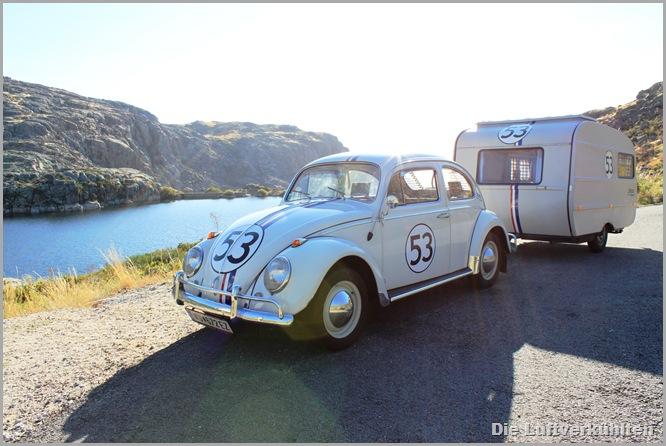 Herbie 044