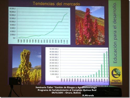Tendencias del Mercado de la Producción y Exportación de la Quinua Real_R.Miranda