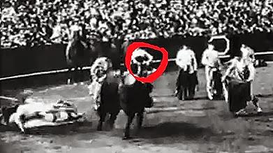 1929 Torero nº 3 05