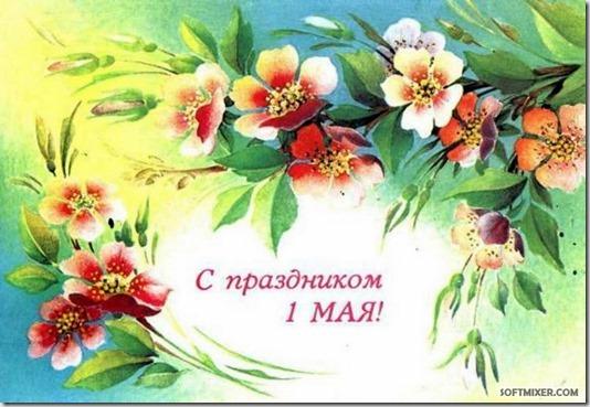 Image00083