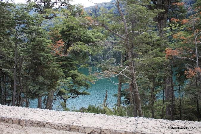 Los árboles nos ayudan a relacionarnos con nuestro legado natural y con nuestros valores espirituales y culturales más profundos.
