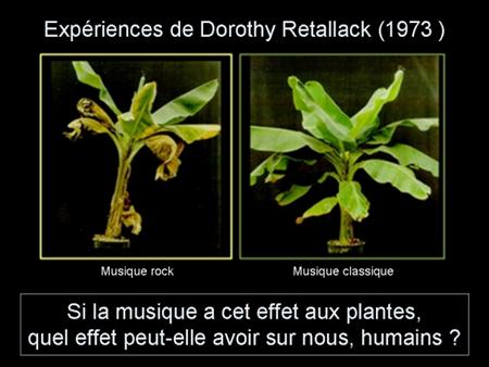 music_plants