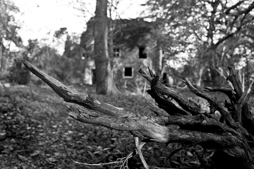 Nettleham Hall 12 - Film