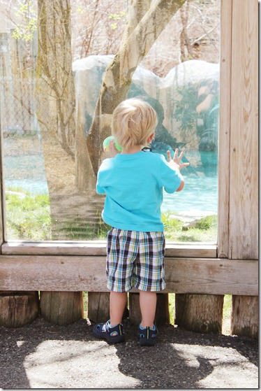 137 tautphaus park zoo