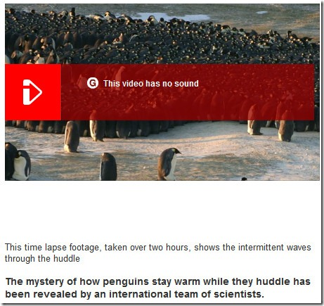 penguin interdependency