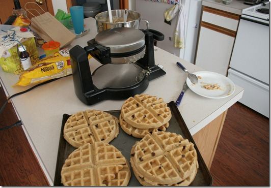 2013-02-24 Chocolate Chip Waffles (2)