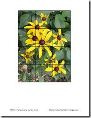 black eyed susan preschool puzzle thumbnail