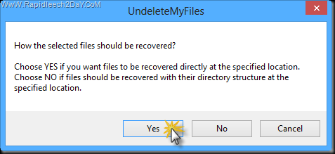 UndeleteMyFiles Pro - Question selected files