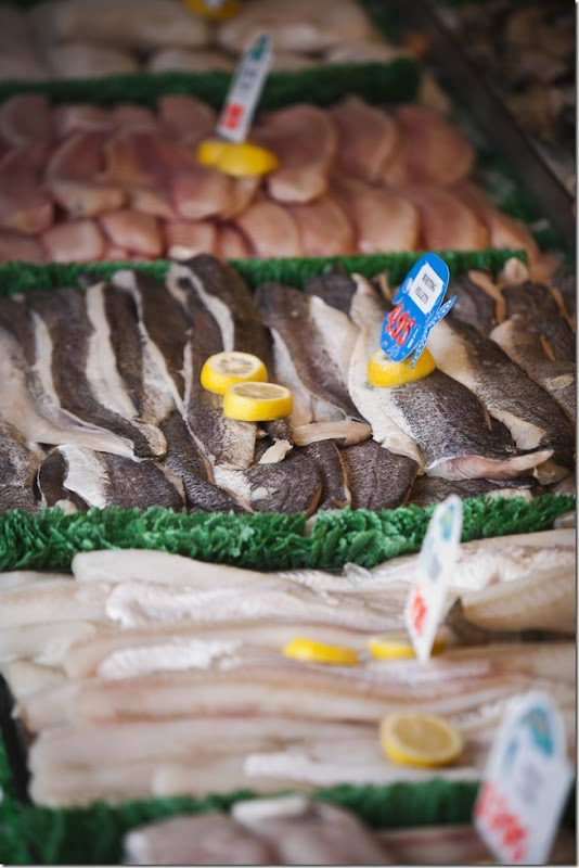 Main Avenue Fish Market-1
