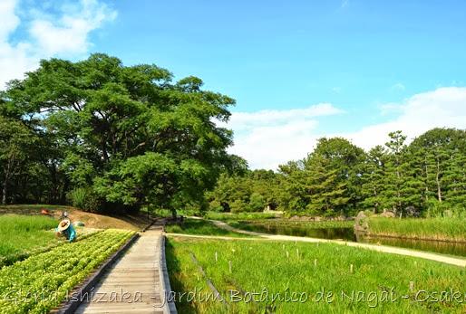 Glória Ishizaka - Jardim Botânico Nagai - Osaka 21