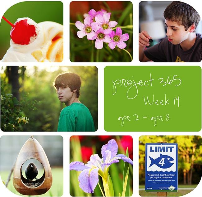4week14w