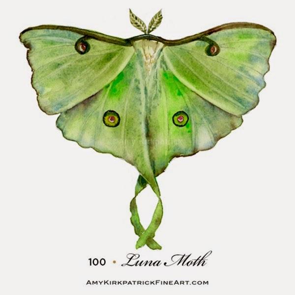 100-Luna-Moth-wt
