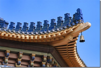 Double Eave Roofs 飛檐(重檐)