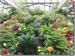 Butchart Gardens 25