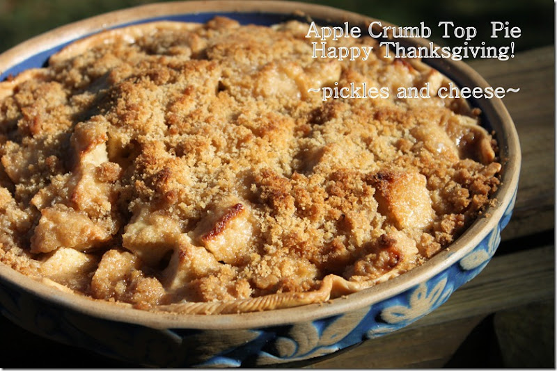 Apple Crumb Top Pie Happy Thanksgiving!