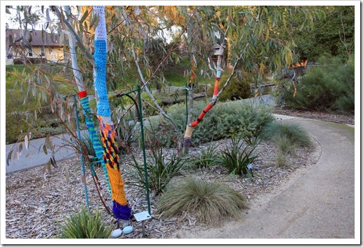 130119_UCDA_AustralianCollection_Natural-Transformations-yarn-bombing_11