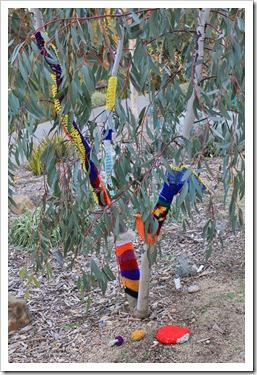 130119_UCDA_AustralianCollection_Natural-Transformations-yarn-bombing_34