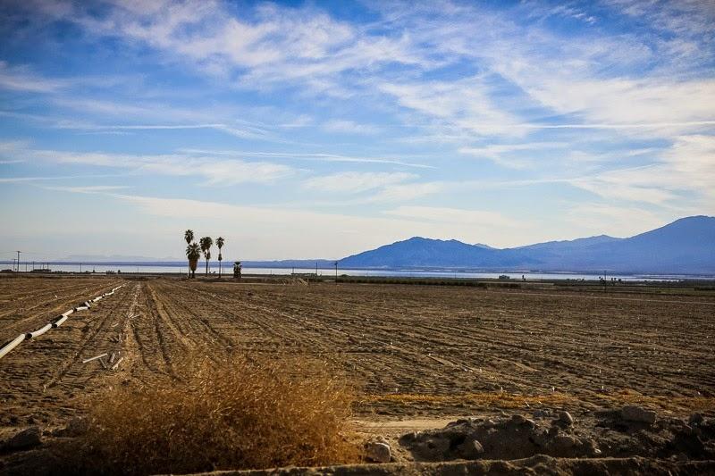65mph landscapes-7