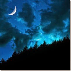 twilight forest moon