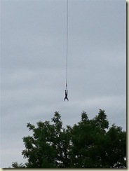 20130724_Bungee 1 (Small)