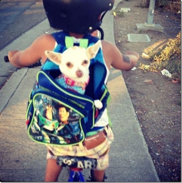 dogs-kids-best-friend-10