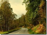 near Kincraig4