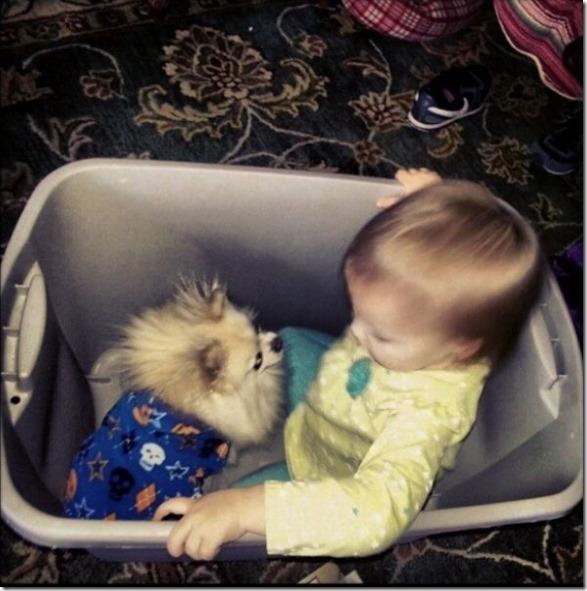 dogs-kids-best-friend-20