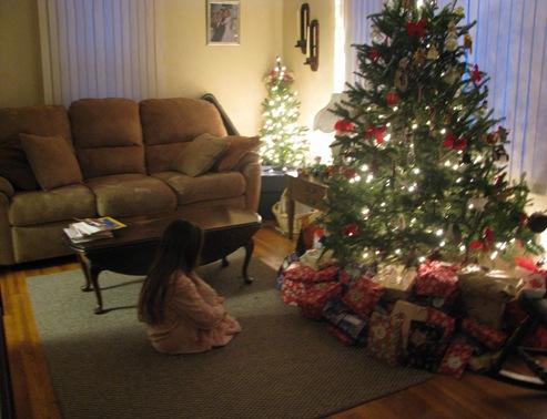 Dec 25 2010 001