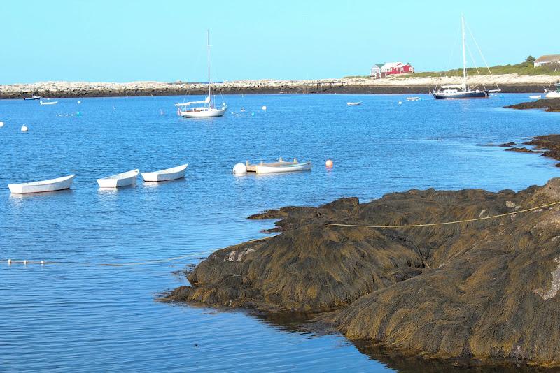 Star Island rowboats.jpg