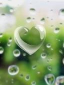 love-rain-drops_fundal telefon