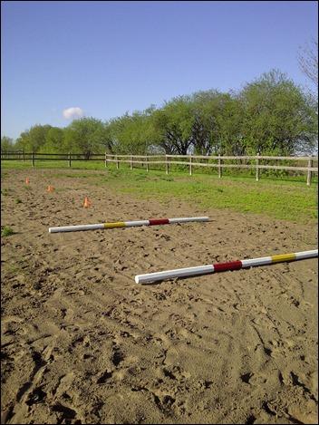 trotpoles