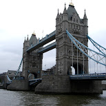 london tower bridge in London, London City of, United Kingdom