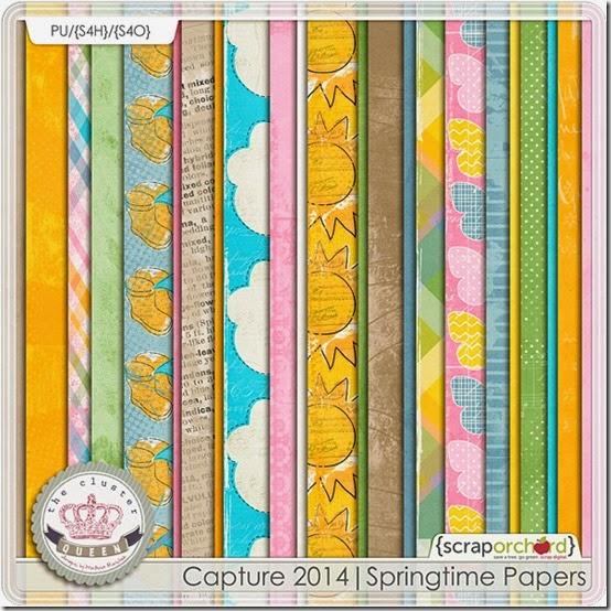 cqc_cap2014_springpapers_folder