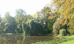 Parque Wilanow