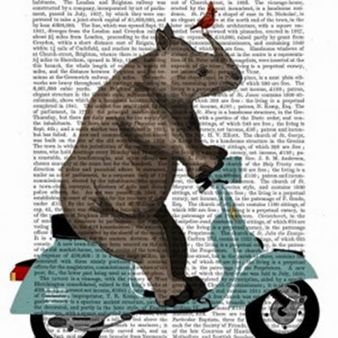Rhino_On_Moped_DicPrint-300x300