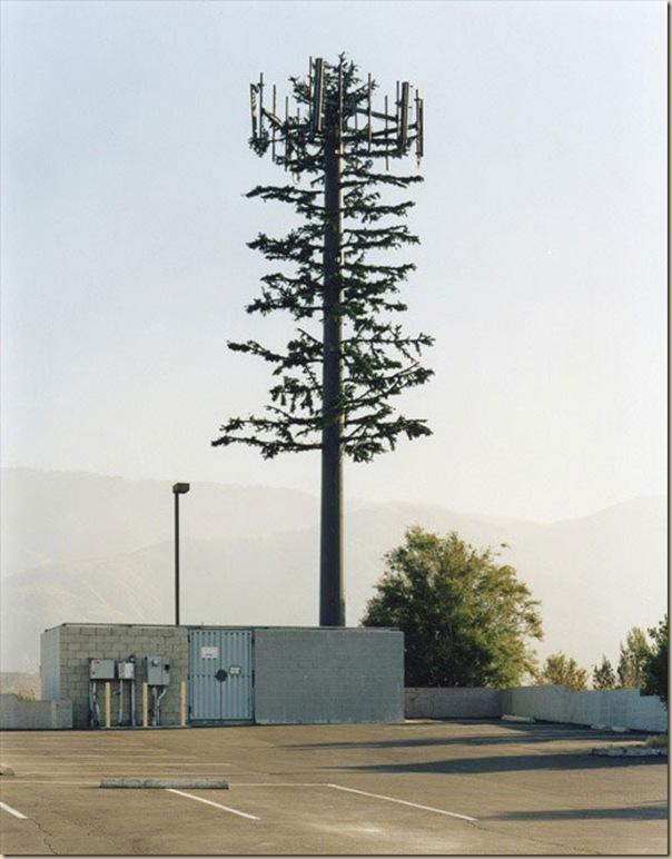 Antennes relais de téléphonie mobile déguisées (18)