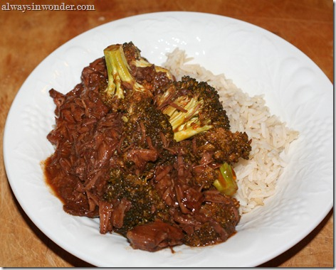 Asian_Tomato_Beef (14)