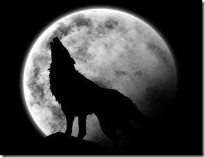 lobo uivando