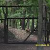 Mazury 2011 i Zoo 136_800x600.JPG