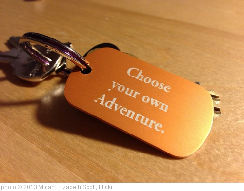 'Choose your own adventure' photo (c) 2013, Micah Elizabeth Scott - license: http://creativecommons.org/licenses/by-sa/2.0/